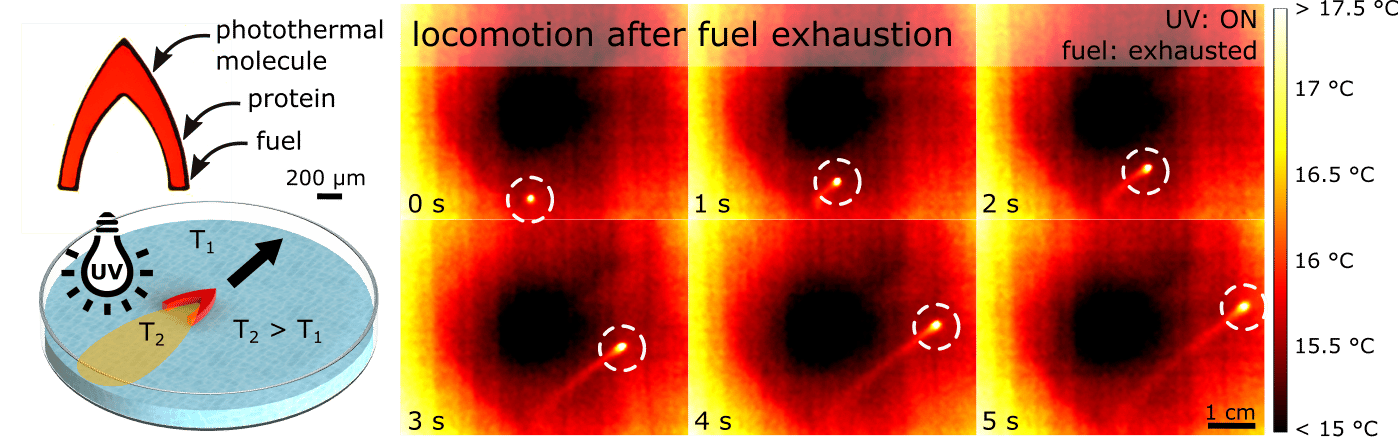 Locomotion after fuel exhaustion