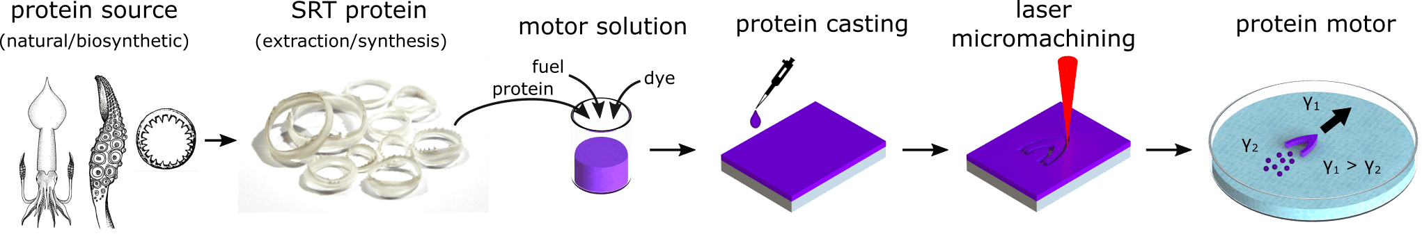 Fabrication of protein-based self-propelled motors