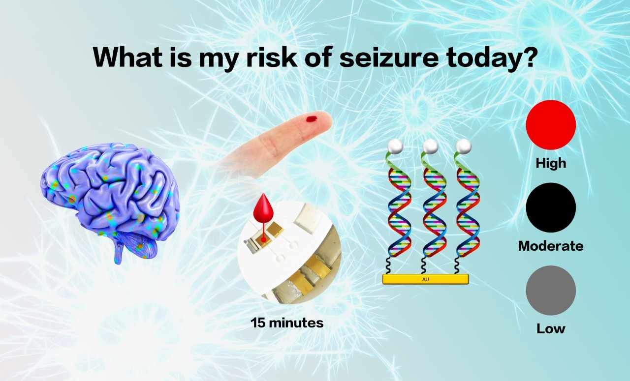 Figure 2: Developing a seizure detection device.